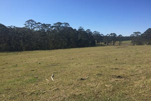 Lot 843 Princes Highway, Termeil, NSW 2539