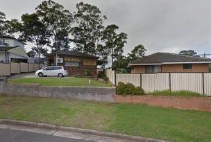 4 Alexandria Place, Busby, NSW 2168