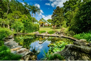 935 Promised Land Road, Bellingen, NSW 2454
