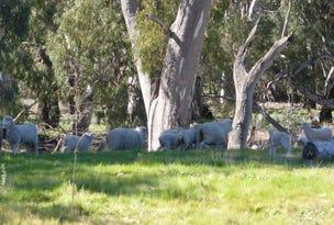 - Arrawidgee Rd, Morundah, NSW 2700