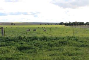 459 Geranium North Road, Geranium, SA 5301