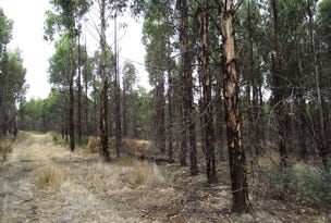 . Blue Hills Road, Copping, Tas 7174