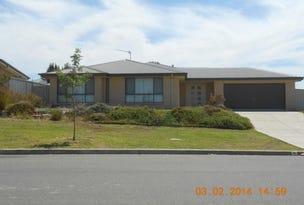 30 Franklin Drive, Estella, NSW 2650