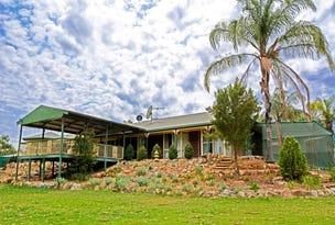 252B Darling View Road, Wentworth, NSW 2648