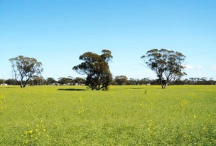 Lot 27 Berkshire Valley Road, Moora, WA 6510