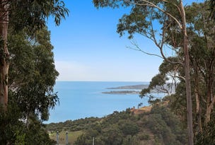 9/270 Skenes Creek Road, Apollo Bay, Vic 3233