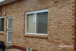 1/130 Curlewis Street, Swan Hill, Vic 3585