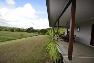 159 Upper Daintree Road (Stewart Creek Valley), Daintree, Qld 4873