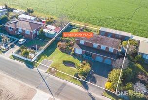 45 Westbury Place, Deloraine, Tas 7304