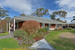 12 Sunways Avenue, Seven Mile Beach, Tas 7170