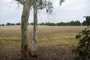 Lot 15, 15 River Park Road, Cowra, NSW 2794