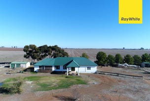 331 Calarie Road, Forbes, NSW 2871