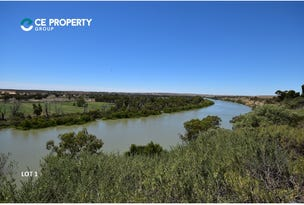 Lot 1 & Lot 2 / 121 Zadow Road, Caloote, SA 5254