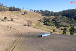 Lot 2 & 4 Moss Beds Road, Lachlan, Tas 7140