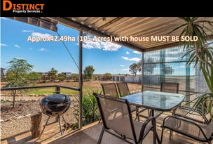 411 Frost Road, Lower Light, SA 5501