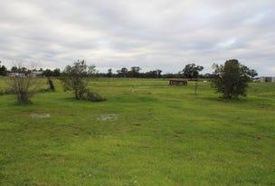 2176 B Newell Hwy, Tichborne, NSW 2870