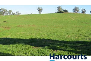 Lot 1 McDougals Road, Neerim South, Vic 3831