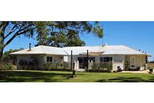Rest Park Middleton's Road, Deniliquin, NSW 2710