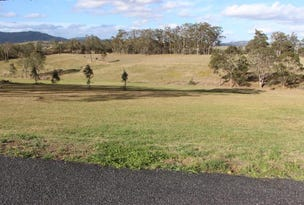 110/Lot 110 Phascogale Cres, Gloucester, NSW 2422