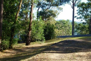 Lot 1, 2 Bridge View Road, Nelligen, NSW 2536