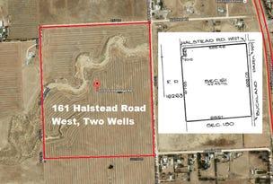 Lot 161 Halstead Road West Two Wells, Virginia, SA 5120