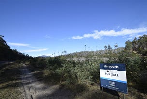 0 Highland Lakes Rd, Deloraine, Tas 7304