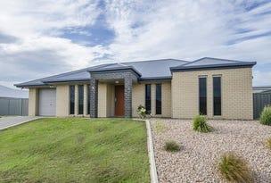 9 Birkdale Court, Worrolong, SA 5291