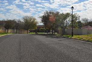Lot 1 Dries Avenue, Gunnedah, NSW 2380