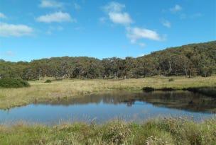 3042 Baldersleigh Road, Guyra, NSW 2365