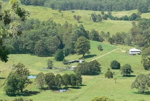 189-191 Saxbys Road, Kundibakh, NSW 2429