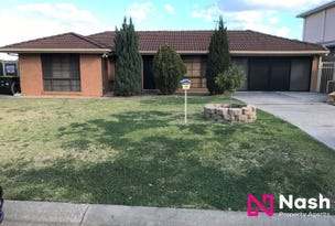13 William Howe Place, Narellan Vale, NSW 2567