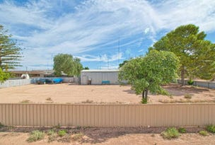 12 Fifth Street, Morgan, SA 5320