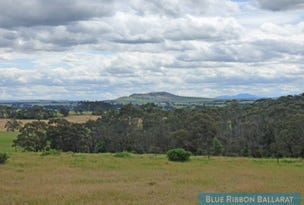 591a Pittong Road, Snake Valley, Vic 3351