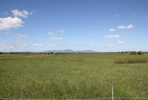 167 Pandora Road, Alton Downs, Qld 4702