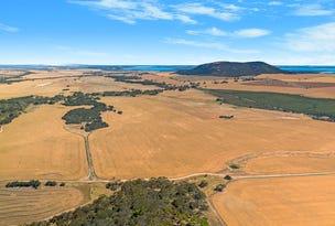 Dutton Springs Flinders Highway, Coulta, SA 5607