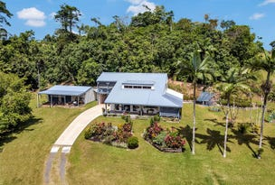 548 Palmerston Highway, Pin Gin Hill, Qld 4860