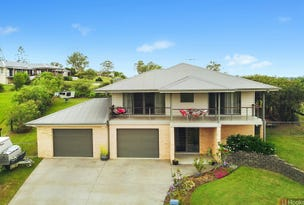 20 Springfields Drive, Greenhill, NSW 2440