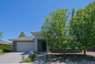 15 Phyllis Frost Street, Forde, ACT 2914