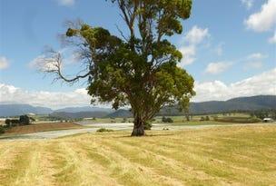58 Weeks Road, Barrington, Tas 7306