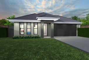 Lot 115 Potters Lane, Raymond Terrace, NSW 2324