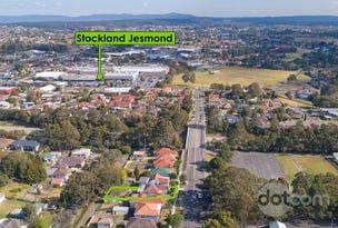 39 Janet Street, Jesmond, NSW 2299