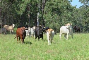- Avenue Road, Ellangowan, NSW 2470