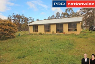 2246 Tunnack Road, Tunnack, Tas 7120