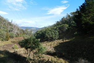 Lot 2 Ironstone Gully Road, Lachlan, Tas 7140