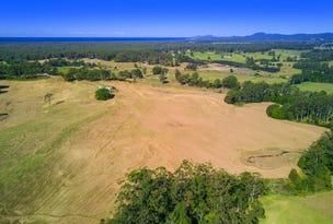 "295 'Wattlebird Estate"", Wirrimbi Road, Newee Creek, NSW 2447"