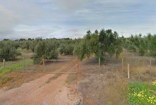 14 Artesian Road, Two Wells, SA 5501