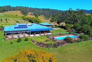 217 Imesons Road, Ettrick, NSW 2474