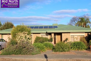 20 Swinden Street, Riverton, SA 5412