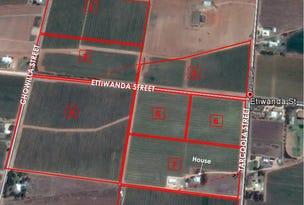 Lot 97 Ettiwanda Street, Renmark, SA 5341