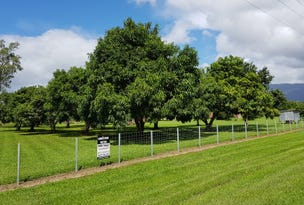 892 Ellerbeck Rd, Kennedy, Qld 4816
